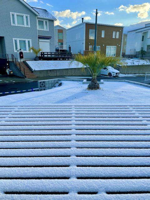 佐島の丘も積雪です。
